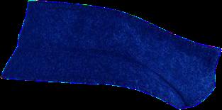 Blue Back Collar