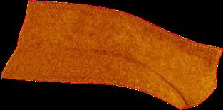 Orange Back Collar